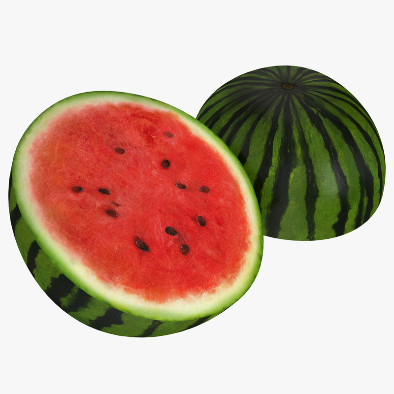 Watermelon Cross Section 3