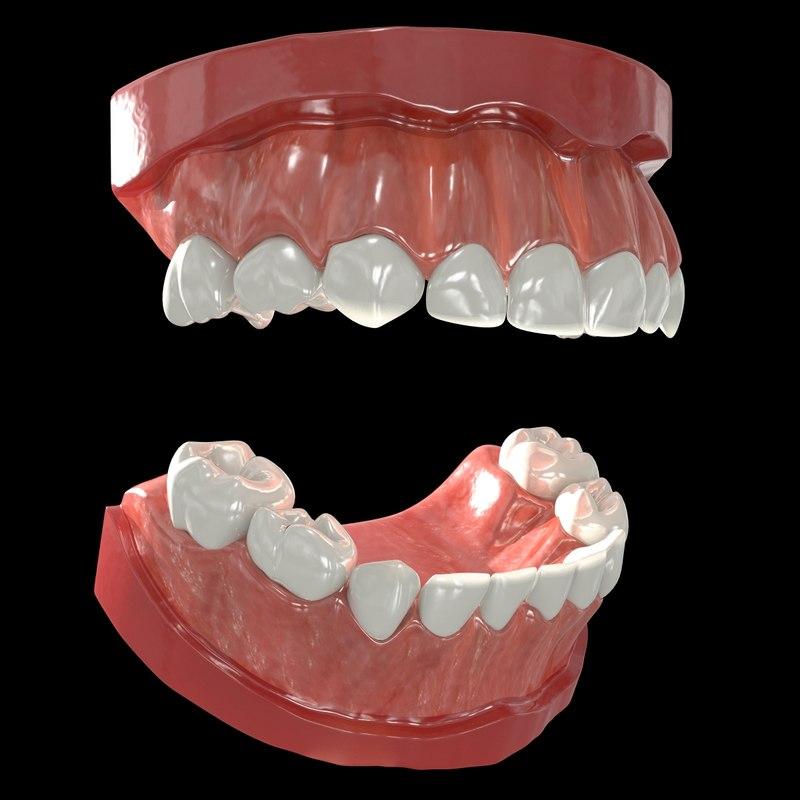 Teeth Primary