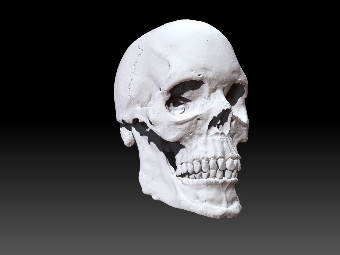 Scull_1.png