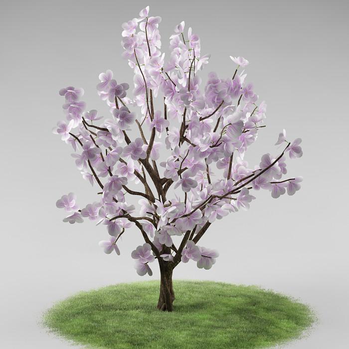 tree_flowers_01