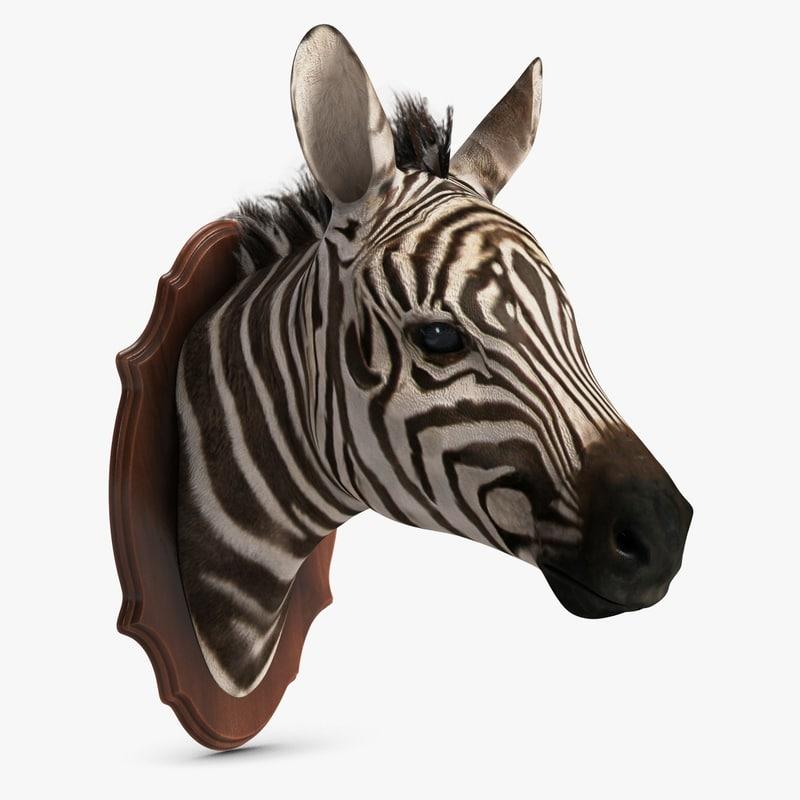 Zebra Head Trophy