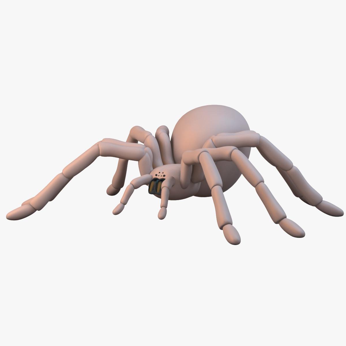 spider_sig_col_v01.png