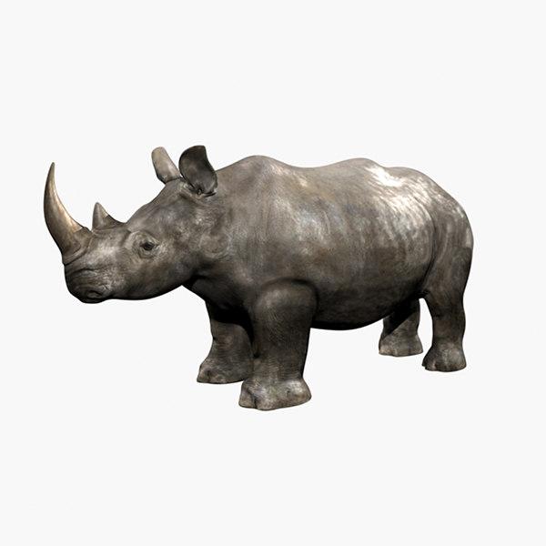Rhino0000.jpg