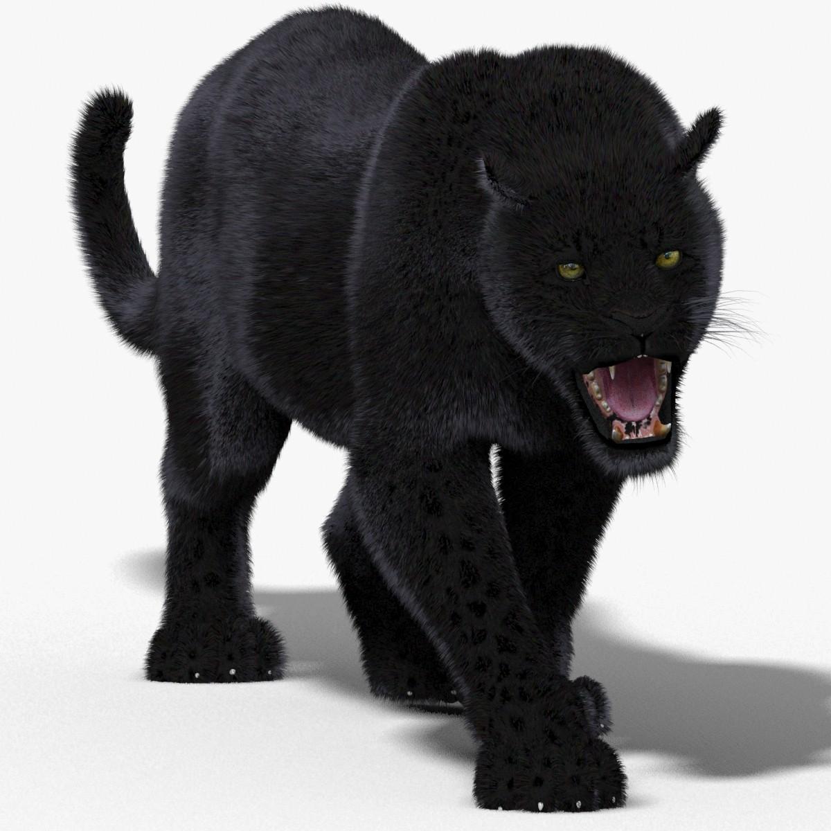 Panther-3D-model-animated-fur-00.jpg