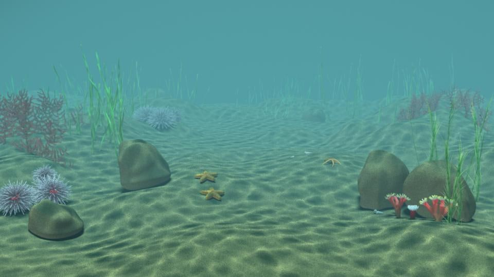 Underwater Scene With Caustics