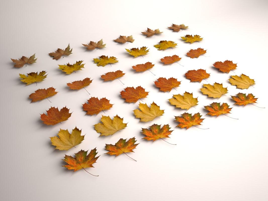 Autumn-Leaves-00.jpg