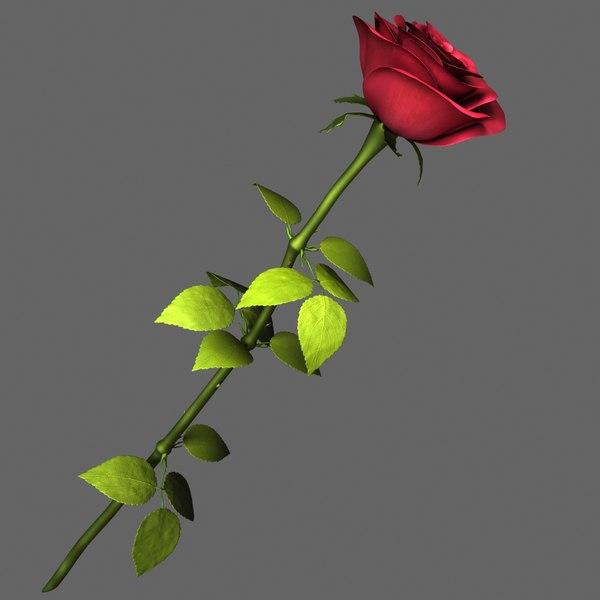 Rose Red 3D Models