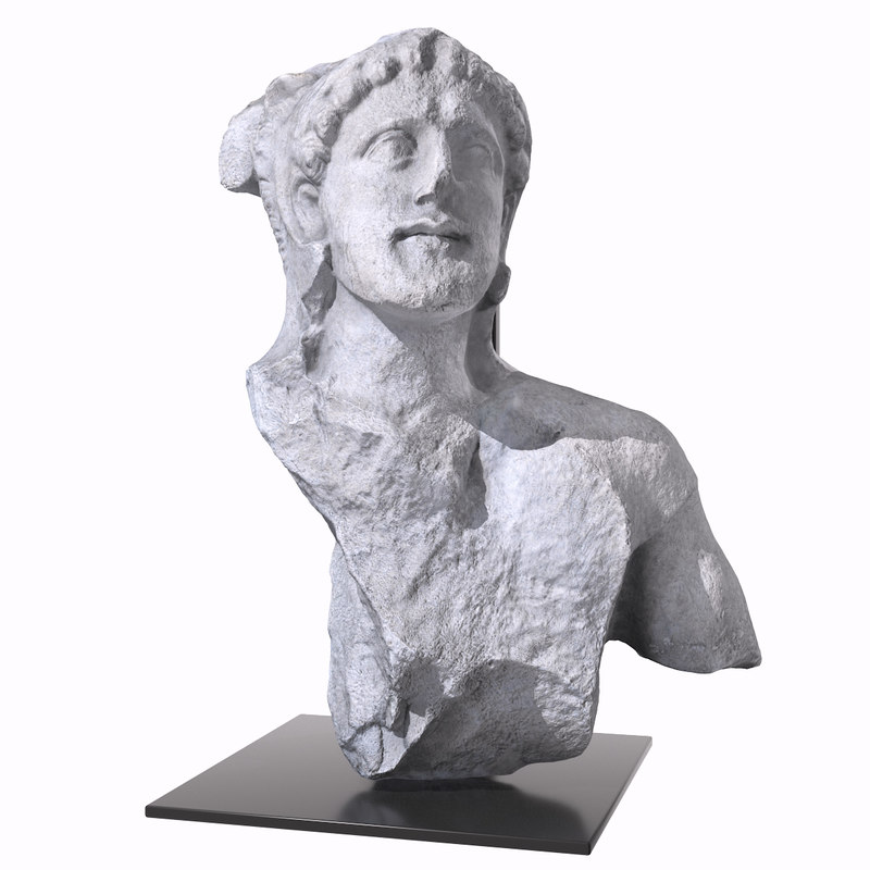 Bust Of Heracles