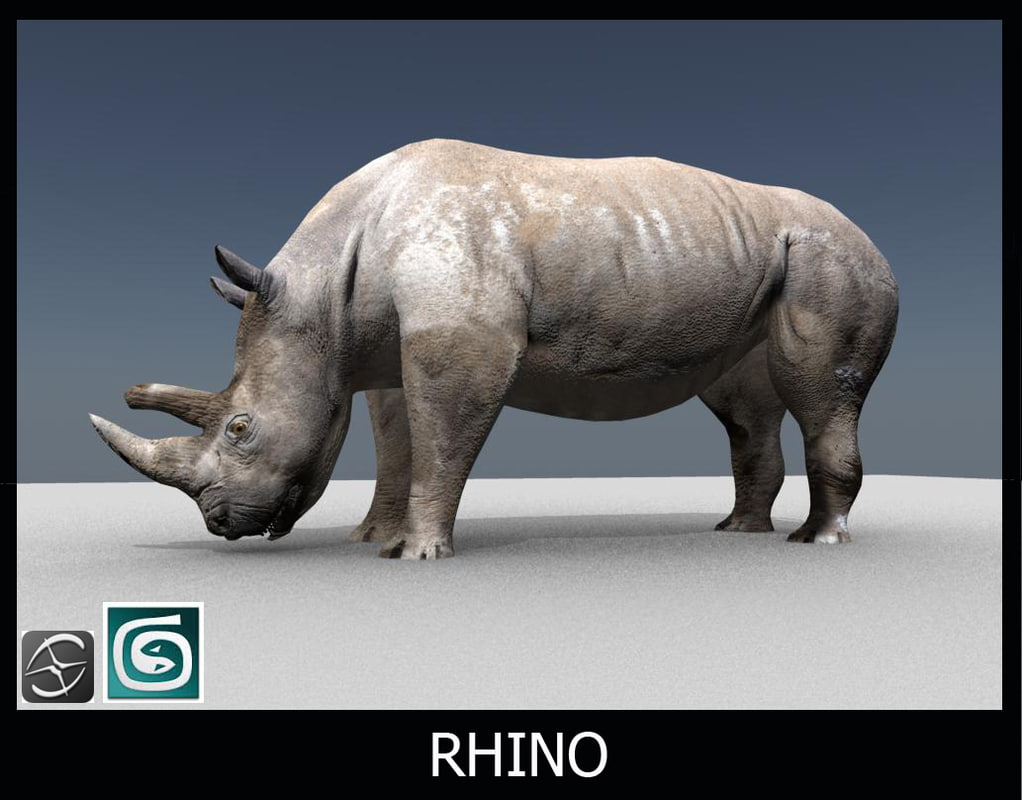 how to move rhino model to 0
