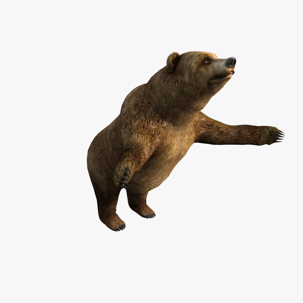 A_Bear_0_001_sign.jpg