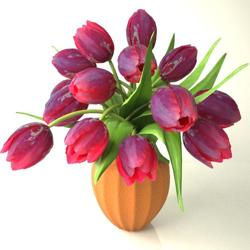 tulips bouquet_v4
