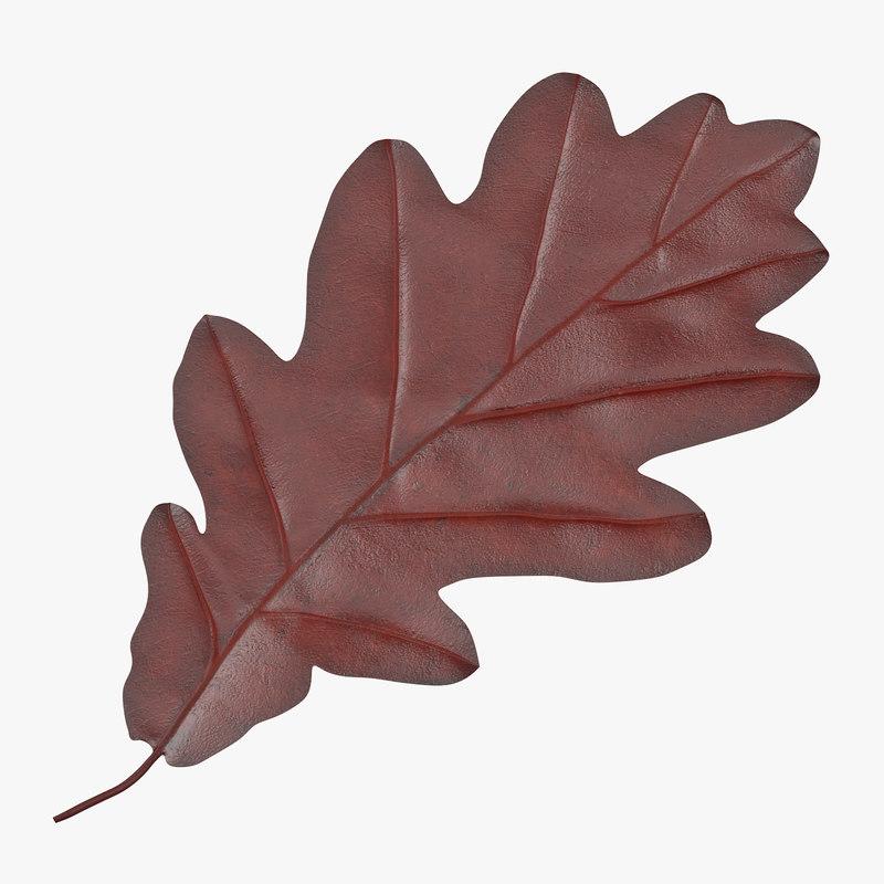 Oak_Leaf_01_Thumbnail_Square_Red_0000.jpg
