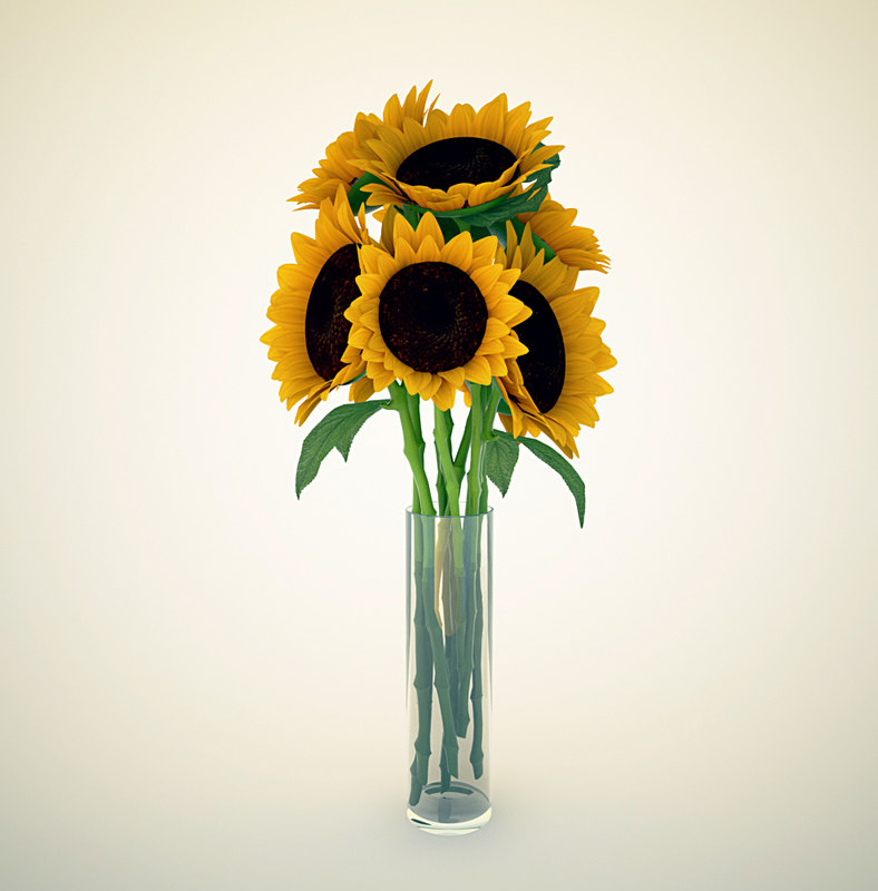 3d sunflower model