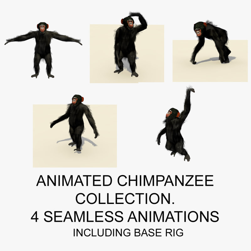 ANIMATED CHIMPANZEE COLLECTION FRONT PAGE.jpg
