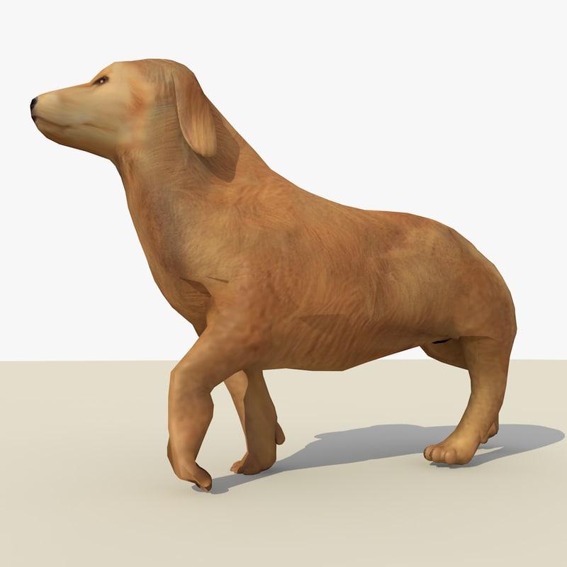 c4d golden retriever dog animations