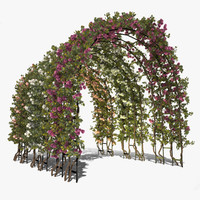 Rose Bush 3D models