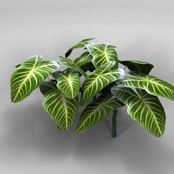 plant Texture Maps