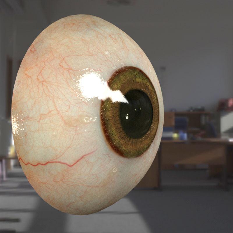 human eye.jpg