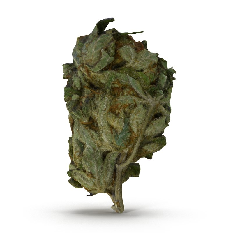 Weed01_R0001.jpg