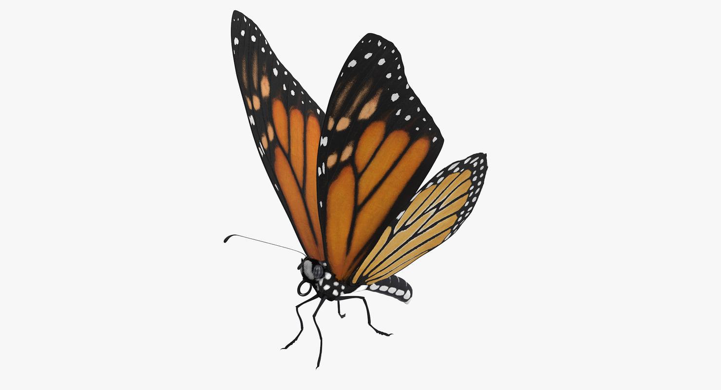 Butterfly_01_Thumbnail_0000.jpg