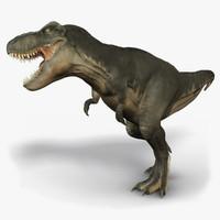 Theropod 3D models