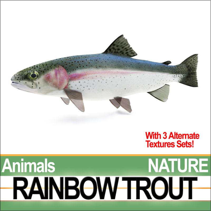 NatureRainbowTroutA1.jpg