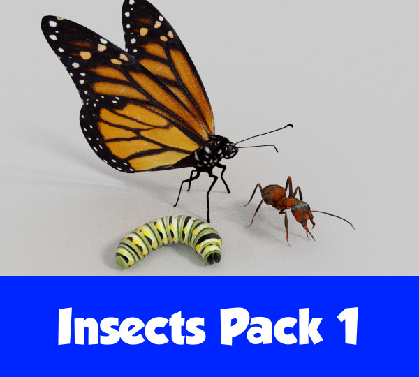 Pack1.png