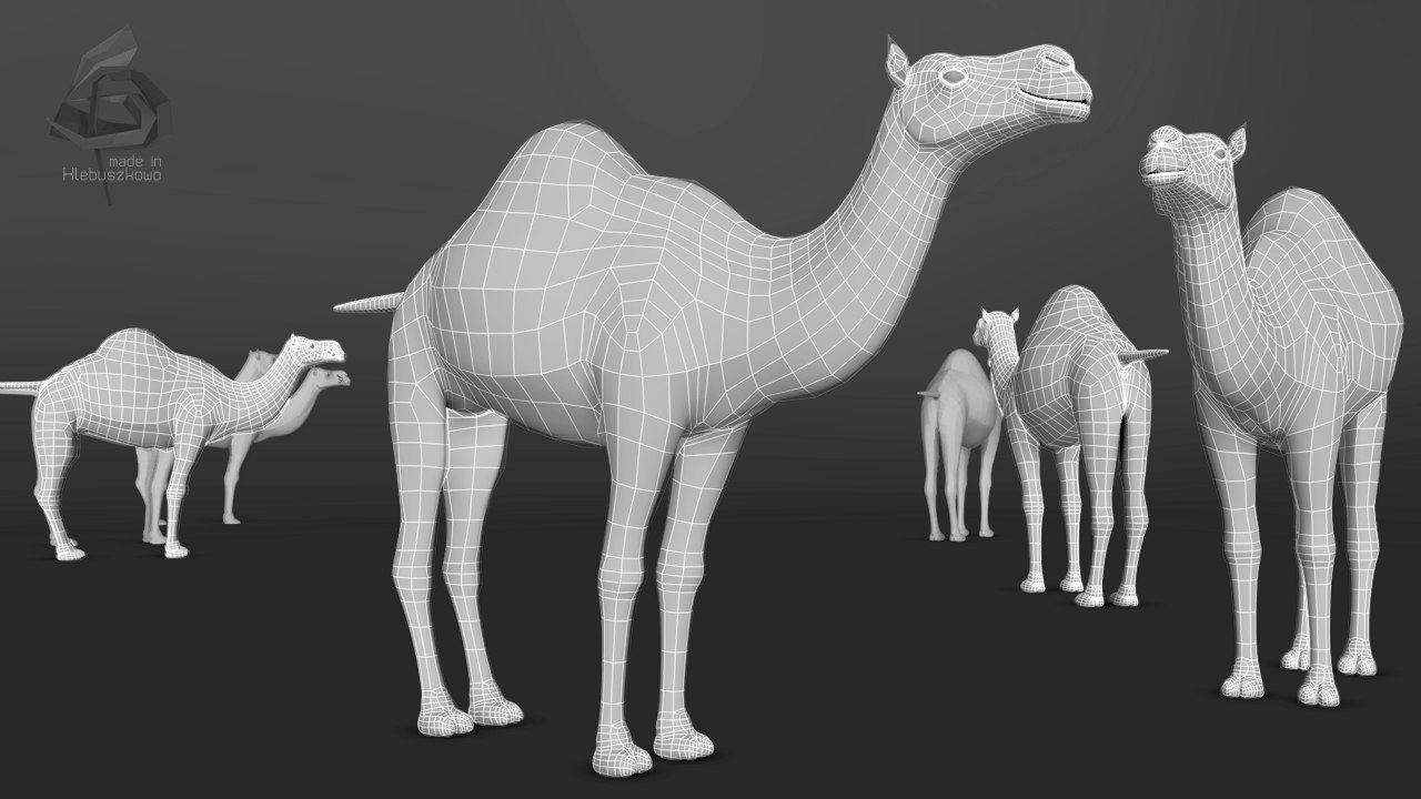3D camel TOPology SD.jpg