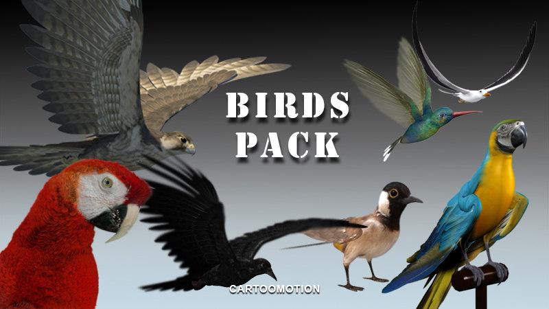 Birds Pack2.jpg