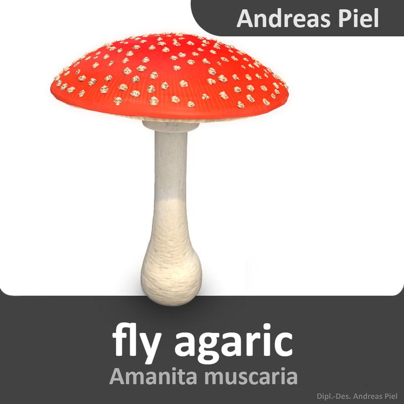 fly_agaric_mushroom_Amanita_muscaria_3d_model_by_Andreas_Piel_01.jpg