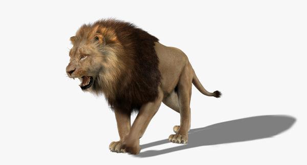 Lion (3) (Animated) (Fur) 3D Models