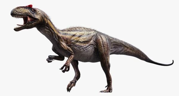 Allosaurus 3D Models