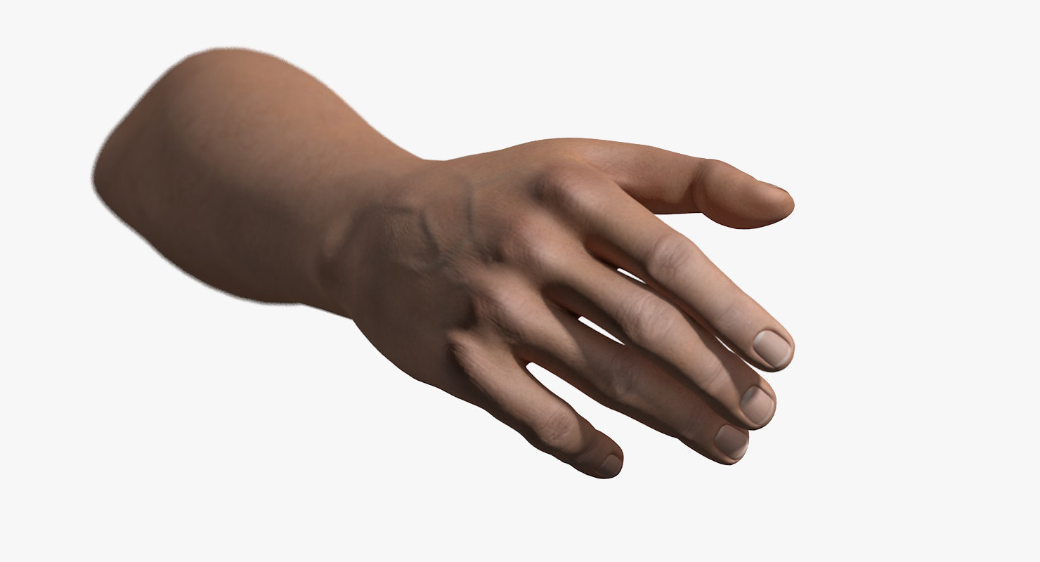 Rigged Male Hand-SignatureWide.jpg