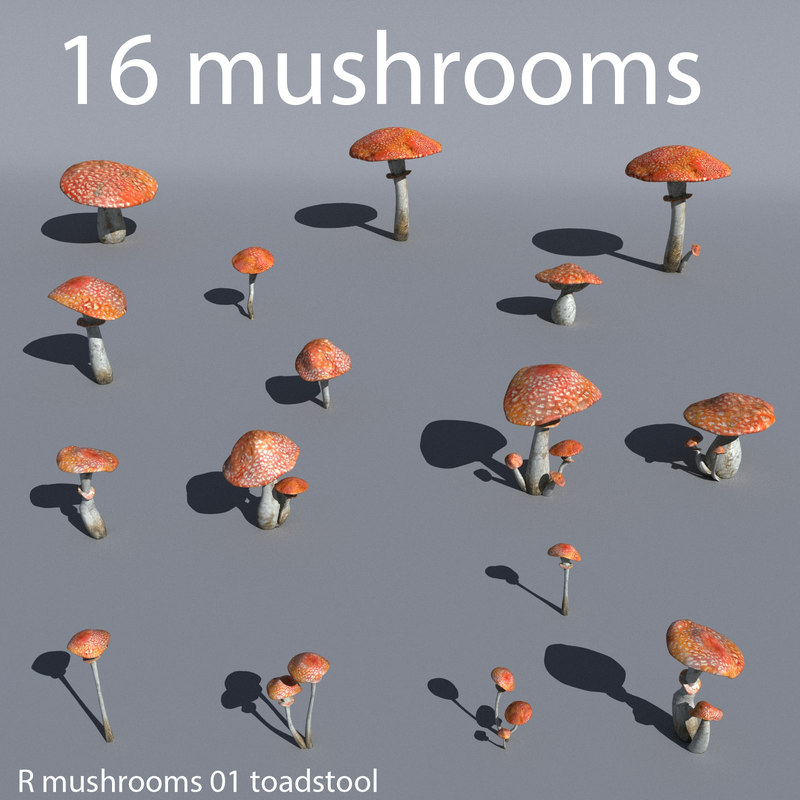 r_mushrooms_toadstool_render_001.jpg
