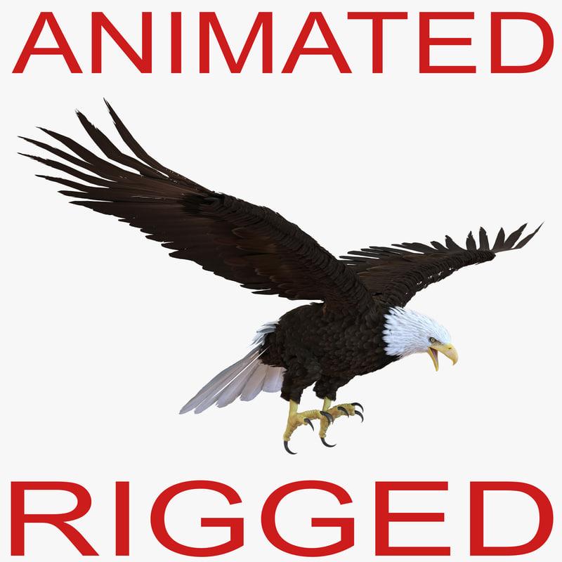 Bald Eagle Rigged 3d model 01.jpg