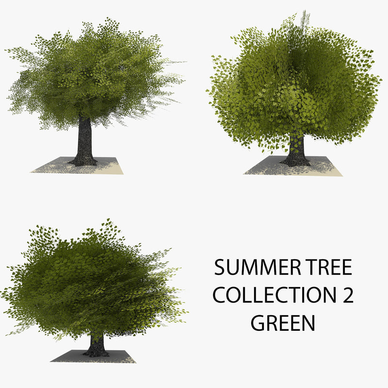 SUMMER TREE COLLECTION 2 GREEN FRONT.jpg