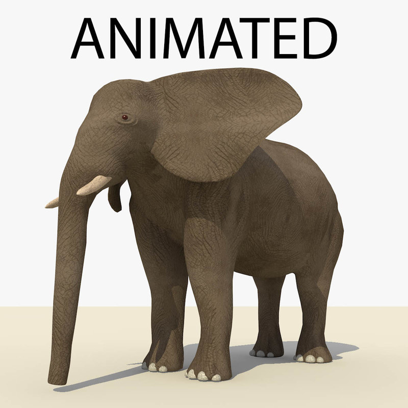 ELEPHANT STANDG BROWN ANIMATED FRONT.jpg