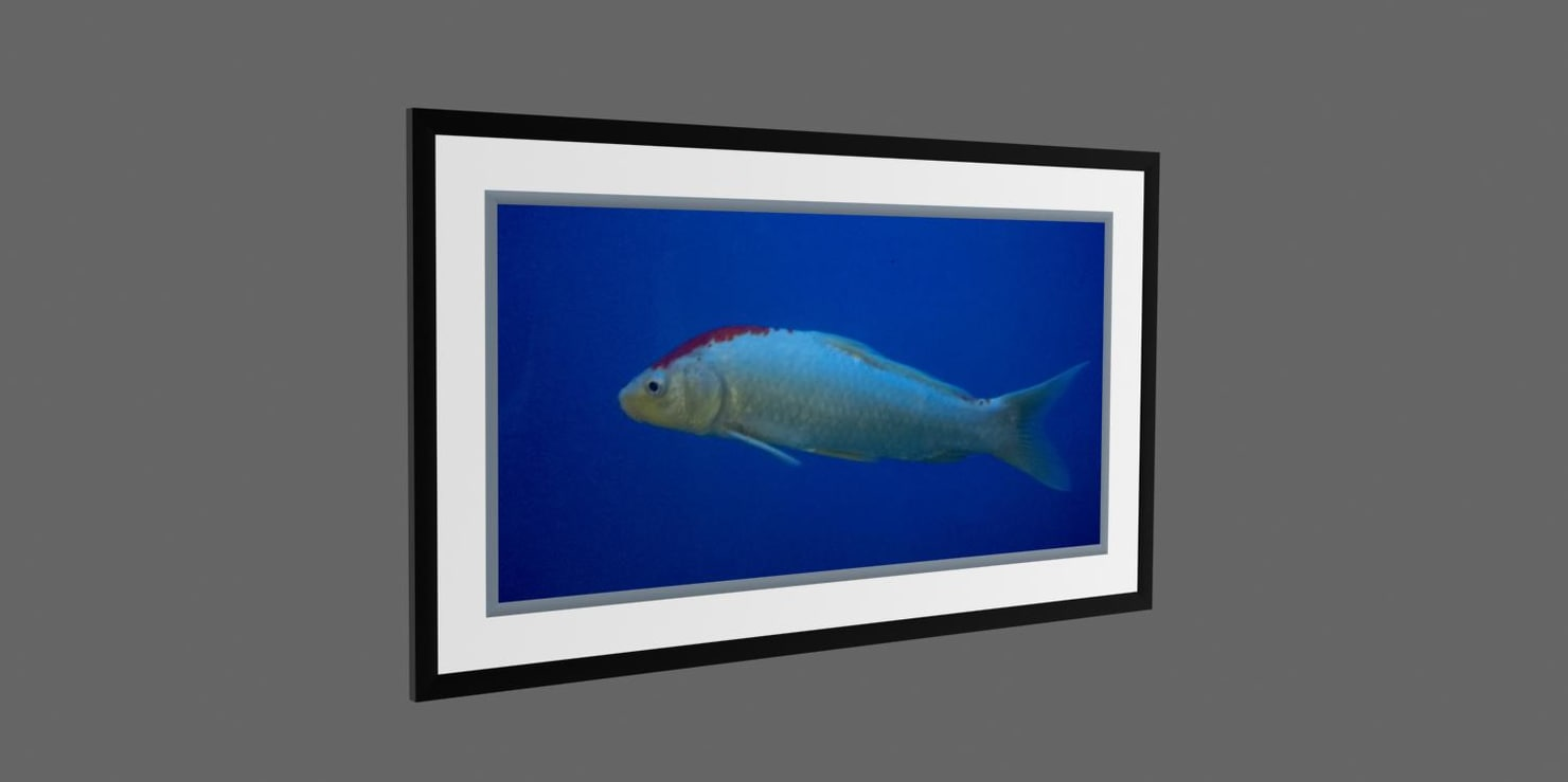 Photo frame fish 3d model for Fish photo frame