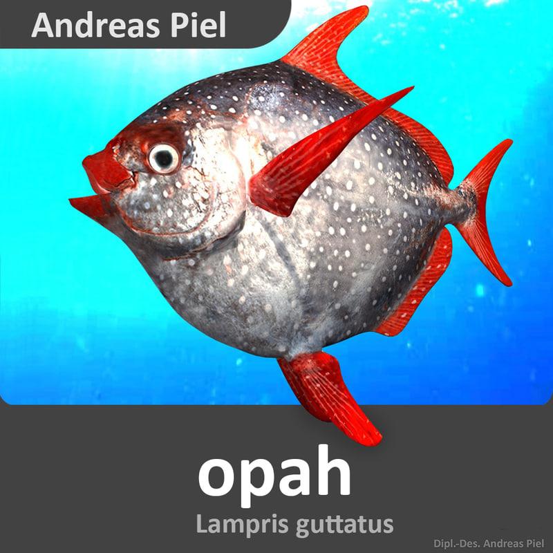 Opah_Lampris_guttatus_moonfish_sunfish_3d_model_by_Andreas_Piel.jpg
