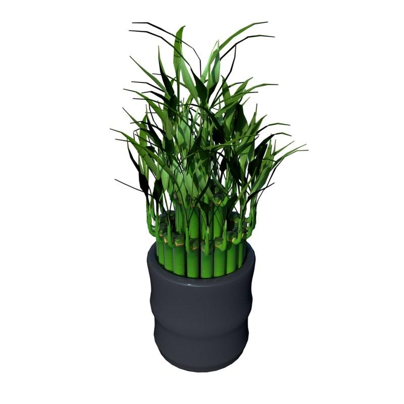 bamboo01.png