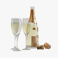 champagne bottle 3D models