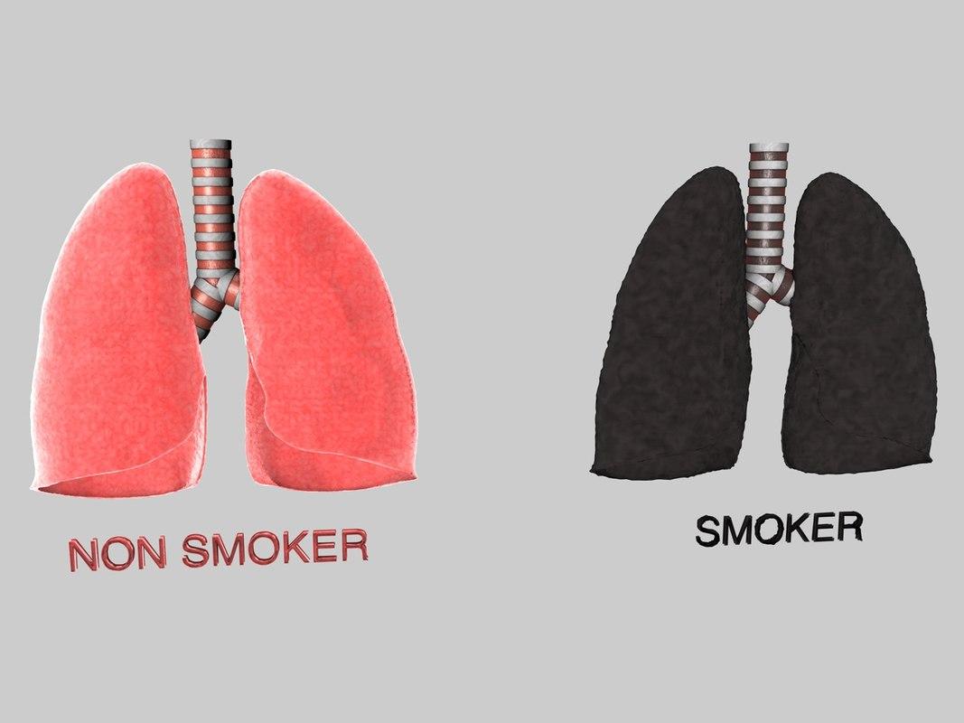 Lung Set 1.jpg