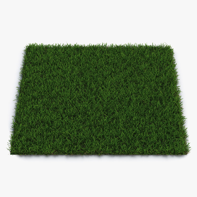 Centipede Warm Season Grass 3d model 01.jpg
