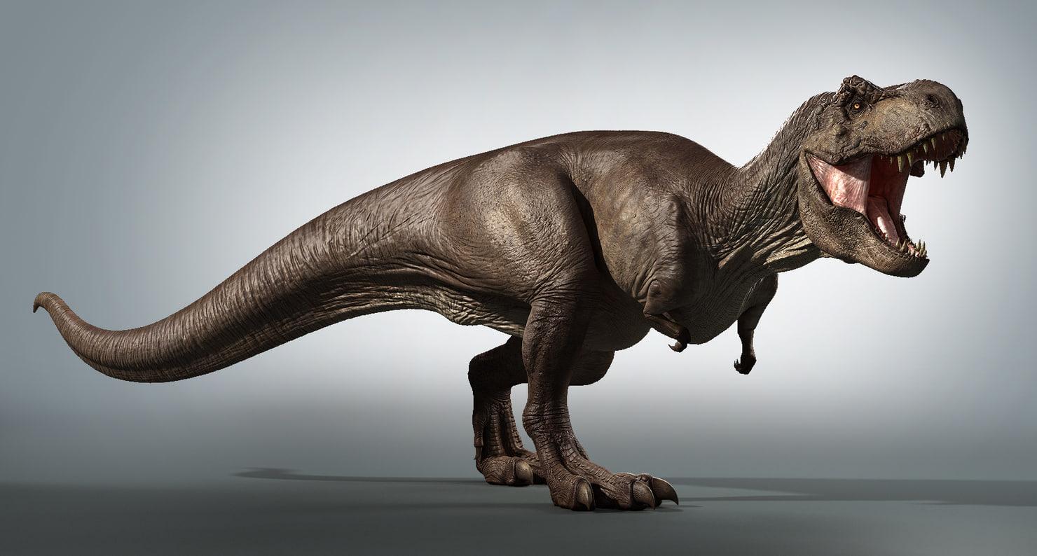 T rex zbrush 3d obj for Tyranosaurus rex