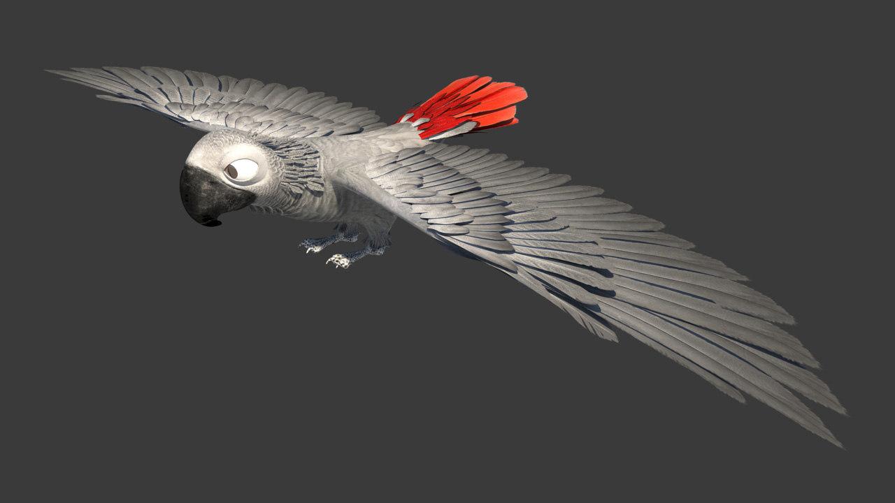 Parrot_1.jpg