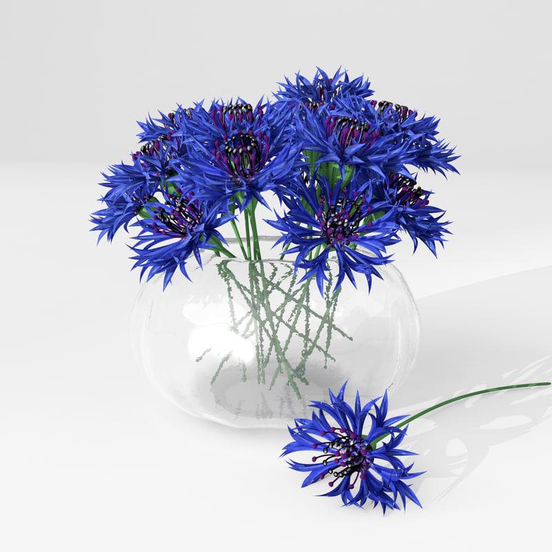 cornflowers_prew3.jpg
