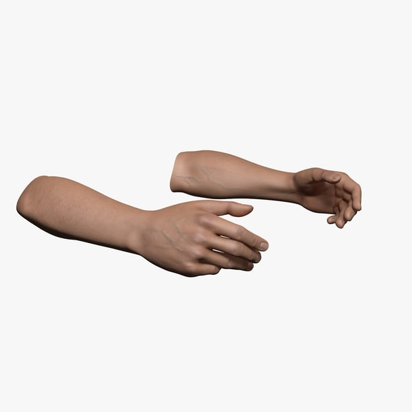 Rigged and Animated Hands (Male) 3D Models