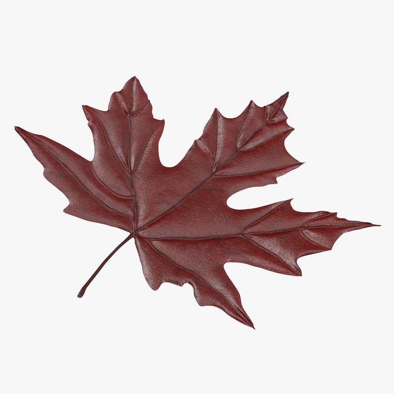 Maple_Leaf_04_Thumbnail_Square_Red_0000.jpg
