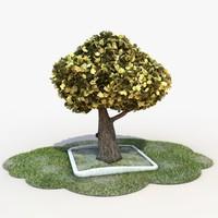 cartoon tree 3D models