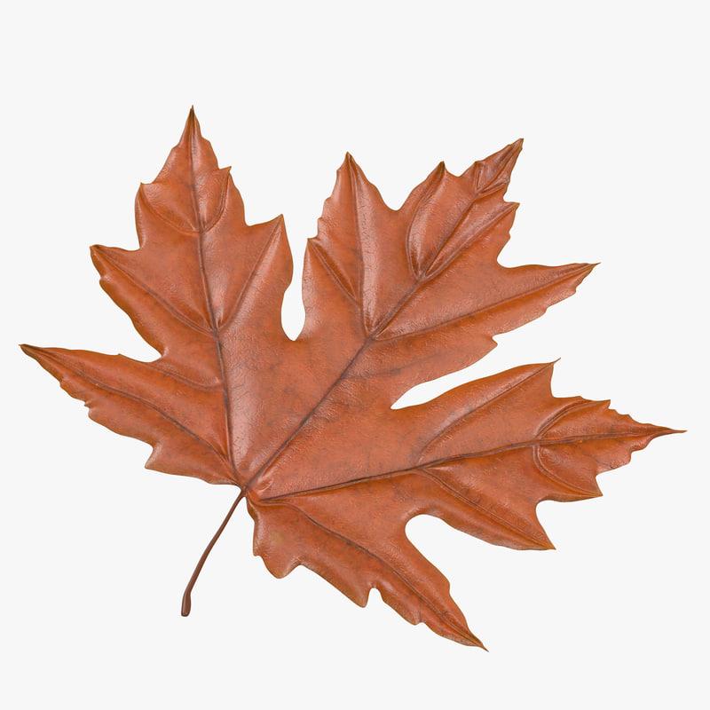 Maple_Leaf_05_Thumbnail_Square_Orange_0000.jpg